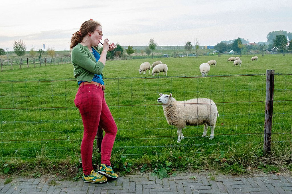 Hannah-and-sheep-Netherlands.jpg