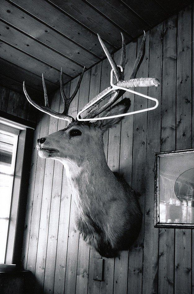 antlers-and-hangers-koken-etc.jpg